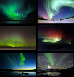 Poster of aurora borealis images. It was assembled by someone on WIKI. Original images listed below: http://en.wikipedia.org/wiki/File:Northern_Lights_02.jpg http://en.wikipedia.org/wiki/File:Polarlicht_2.jpg http://en.wikipedia.org/wiki/File:Aurore_australe_-_Aurora_australis.jpg http://en.wikipedia.org/wiki/File:Red_and_green_aurora.jpg http://en.wikipedia.org/wiki/File:Northern_light_01.jpg http://en.wikipedia.org/wiki/File:Aurora_%26_moon.jpg
