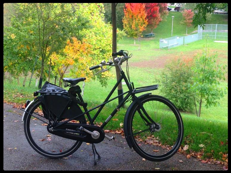 Work Cycle. I <3 this bike!