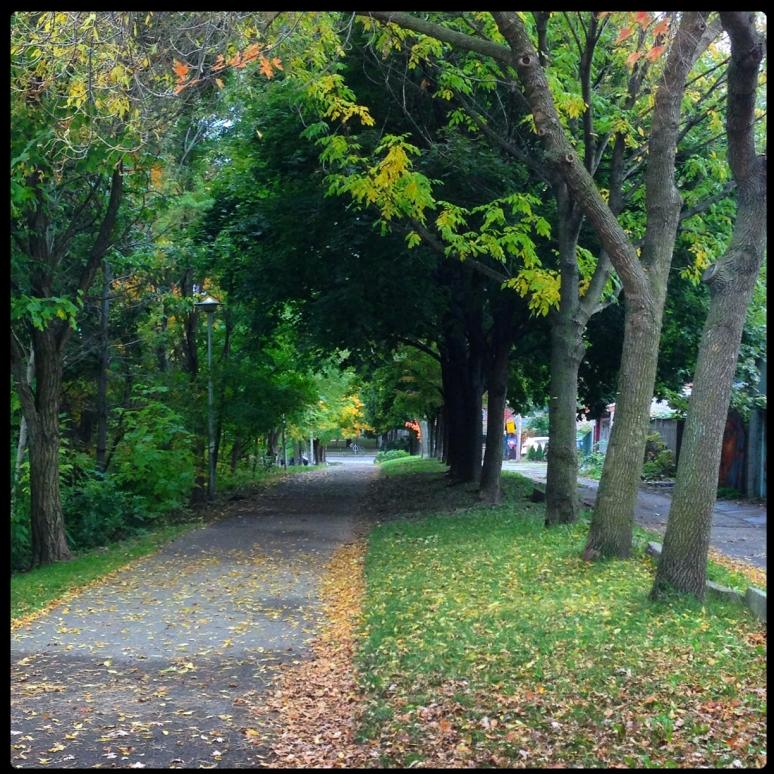 Biking through Bickford Park